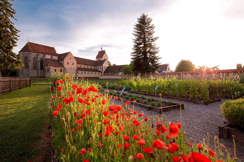 Insel Reichenau: Herb garden with poppies © Helmut Scham/Tourist Office Reichenau