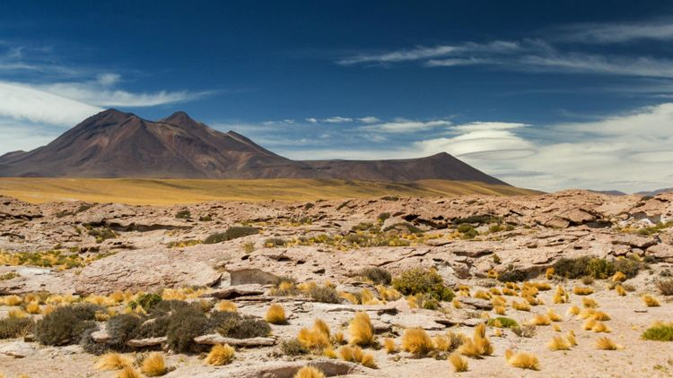 atacama-desert-chile-shutterstock_561125371