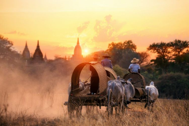 bagan-transport-local-myanmar-burma-shutterstock_1087683710
