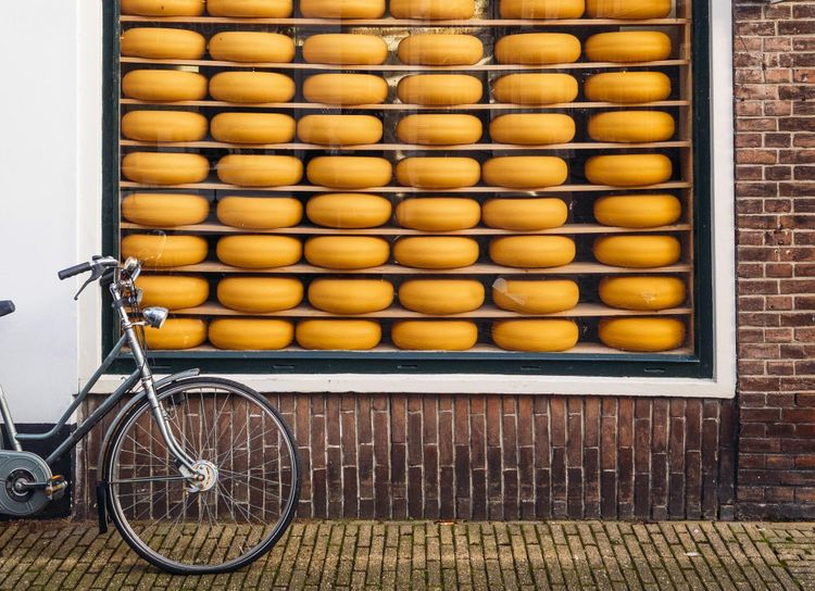 gouda-cheese-bicycle-netherlands-shutterstock_555404203