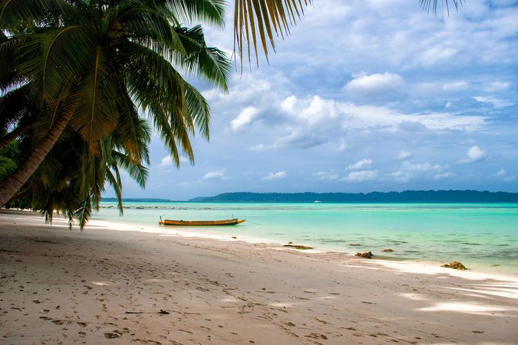 Havelock Island Andamans India