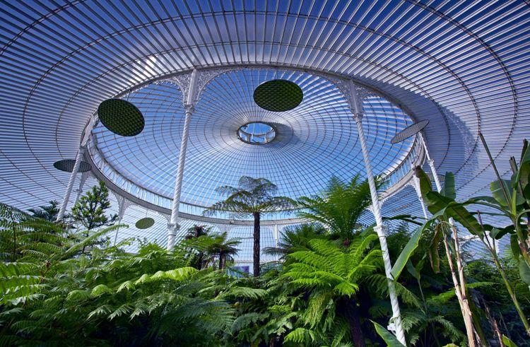 Palmhouse, Glasgow Botanical Gardens