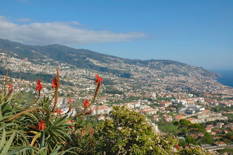 Portugal, Madeira, city of Funchal on landscape seen from Pico dos Barcelos