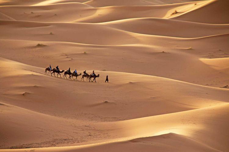 sahara-caravan-morocco-shutterstock_501830164