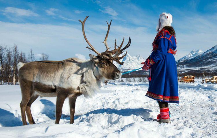 sami-reindeer--norway-shutterstock_1060031279