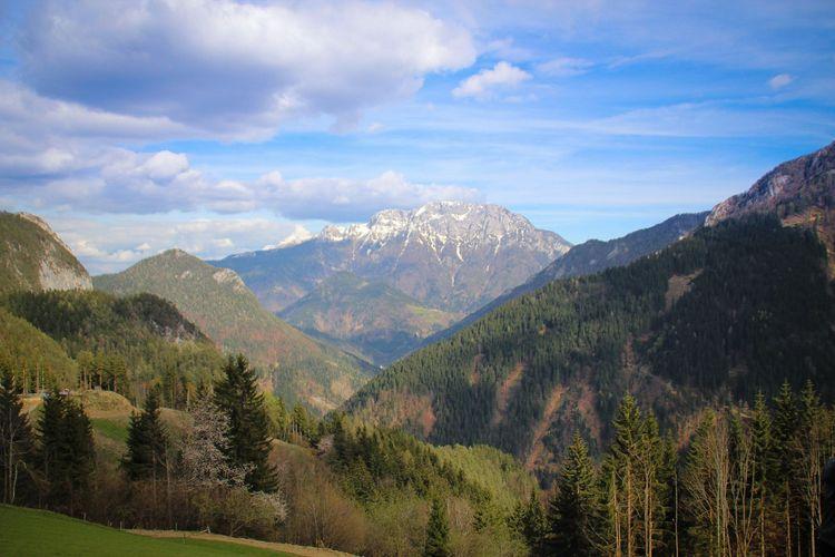 Logarska Dolina, Slovenia, copyright Lottie Gross 2014