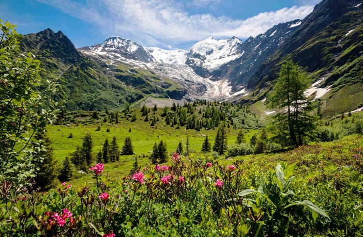 spring-mountains-apls-france-shutterstock_456467581