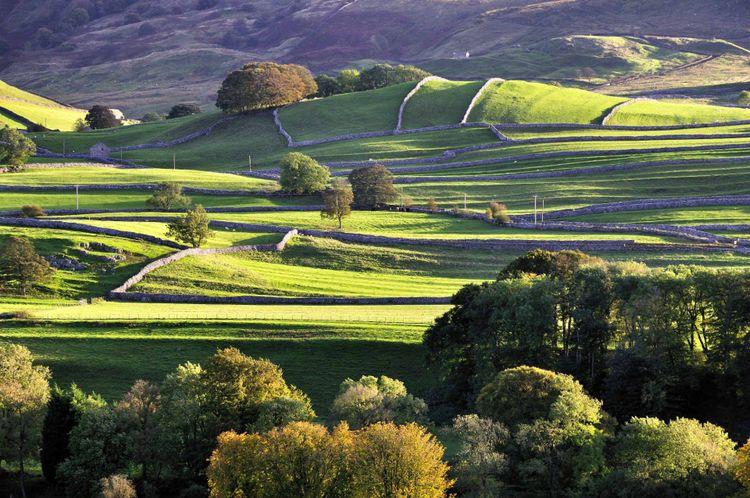 yorkshire-landscape-field-uk-shutterstock_197768828