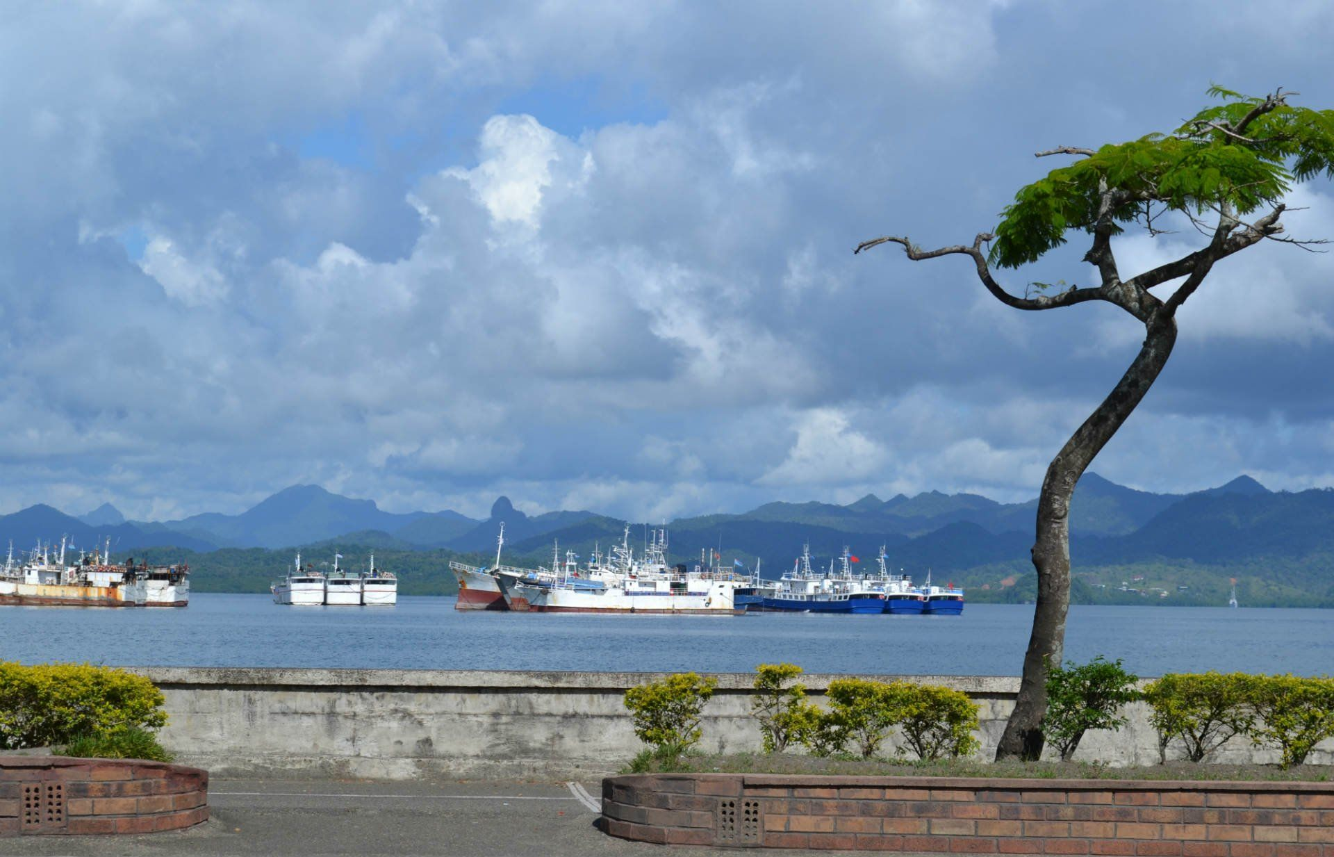 Suva And Around Fiji Travel Guide Rough Guides